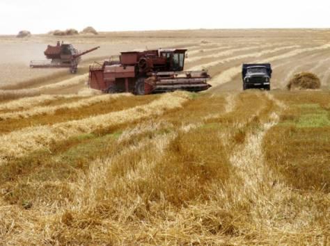 Продажа Сельхозпредприятия в Ростовской обл. , фотография 1