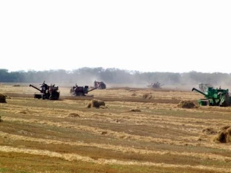 Продажа Сельхозпредприятия в Ростовской обл. , фотография 3