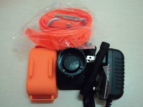Электронный ошейник для охотничьих собак почтой рф, фотография 5