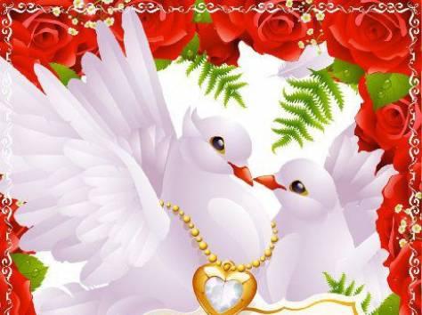 Веселые, открытка свадебная голубки