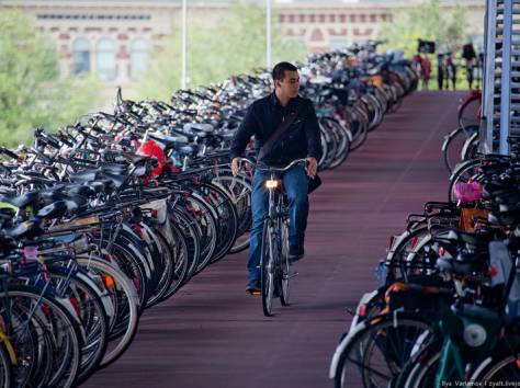 велосипеды мопеды мотоциклы, фотография 6