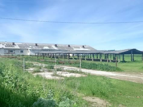 ферма в Малоярославецком районе, фотография 2