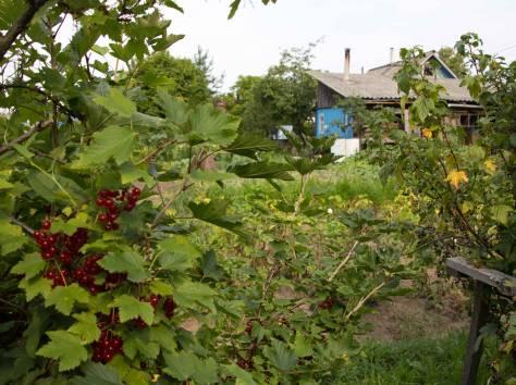 Голубой дом с цветочками, ул. Лиды Сидоренко,11, фотография 5