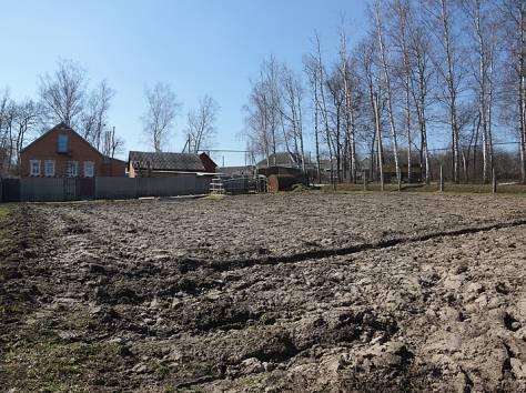 Продаётся жилой  дом в п. Борисовка Белгородской области, фотография 4