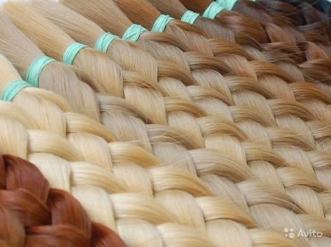 Куплю, продам ваши волосы , фотография 1