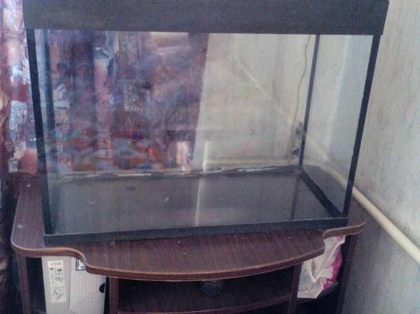 аквариум 120 литров, фотография 2