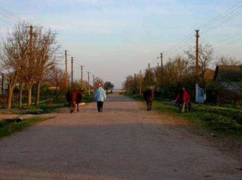 участок у моря, Республика Крым, Ленинский район, пгт. Ленино, фотография 7