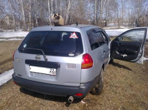 Продается Nissan AD 2001г, фотография 2