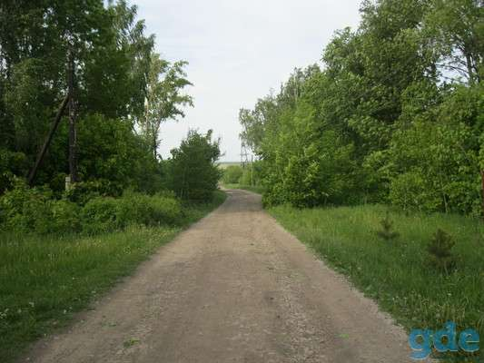 Продается дом с участком земли, с. Чулково, фотография 2