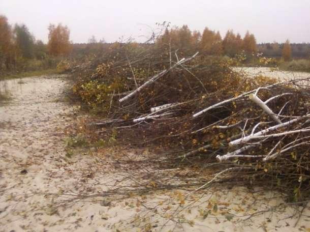 демонтаж строений , расчистка от кустов и порослей , земляные работы., фотография 1