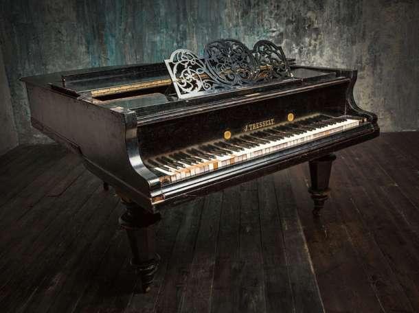 Настройка, ремонт пианино, фортепиано в Батецком, фотография 1