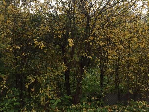 Каширское шоссе, д. Суханово, СНТ «Флора», участок 735 кв. м., фотография 1