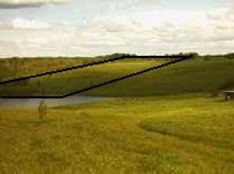 Продам земельный уч. 4,2 га Вологодская обл, берег озера Салозеро., фотография 3