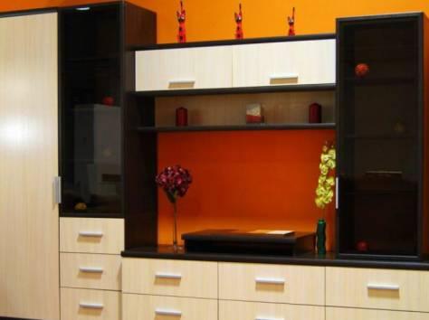 Изготовление корпусной мебели на заказ, фотография 3