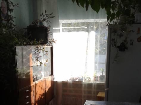 Уютный дом на берегу озера Ильмень, фотография 4