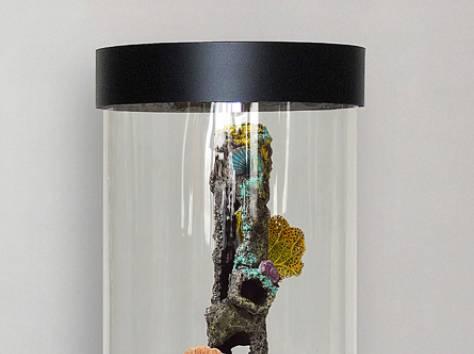 Уникальная красота, красивый аквариумный комплекс 90л, фотография 2