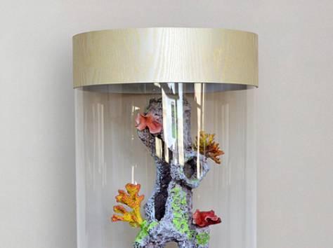 Уникальная красота, красивый аквариумный комплекс 90л, фотография 11