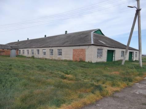 Ферма животноводческая, фотография 3