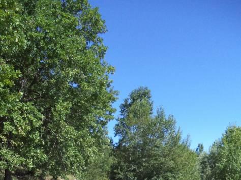 Skoda Yeti, 2010 г. Пробег 110 000 - 119 999 км, 1.2 АТ, бензин, передний привод, кроссовер, левый руль, цвет коричневый, фотография 1