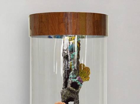 Комплекс: аквариум цилиндрический 90л, фотография 1