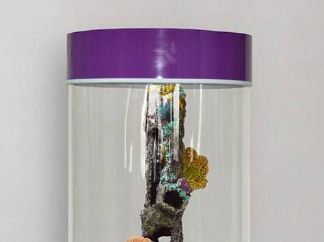 Комплекс: аквариум цилиндрический 90л, фотография 2