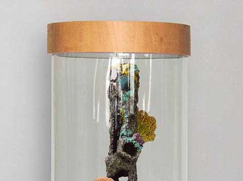 Комплекс: аквариум цилиндрический 90л, фотография 4