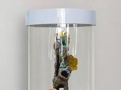 Комплекс: аквариум цилиндрический 90л, фотография 5