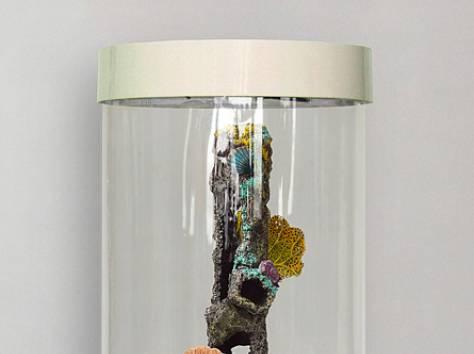 Комплекс: аквариум цилиндрический 90л, фотография 8