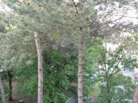 Продажа 2-х комнатной квартиры в курортной зоне г. Железноводск, фотография 5
