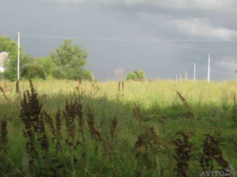 аренда земли с х в липецкой области скорее