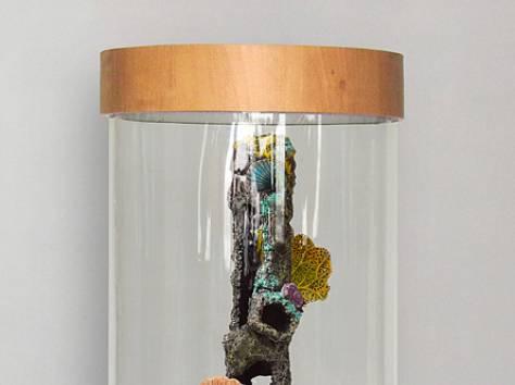 Изумительный, цилиндрический аквариум 90л, фотография 6