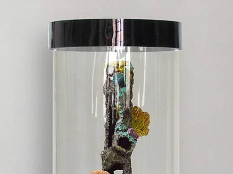 Изумительный, цилиндрический аквариум 90л, фотография 7