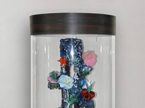 Уникальная красота - цилиндрический аквариум 130л, фотография 3