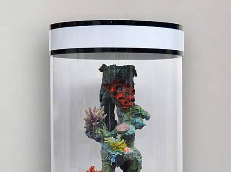 Уникальная красота - цилиндрический аквариум 130л, фотография 6