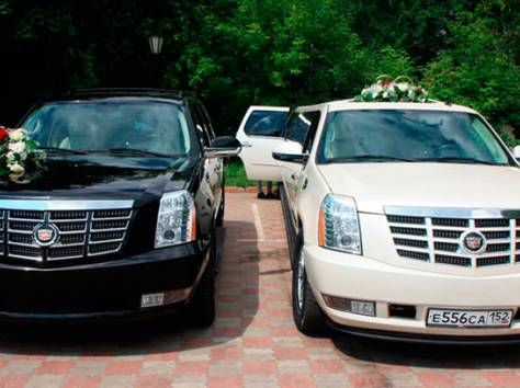 автомобили в прокат на свадьбу, уфа. очень недорого. заказать свадебный автомобиль в уфе., фотография 1