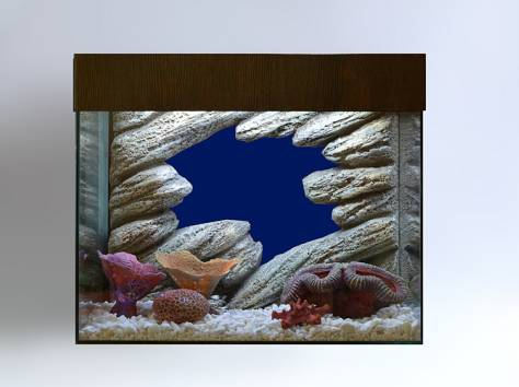 Декоративный задний фон для аквариума на заказ, фотография 5