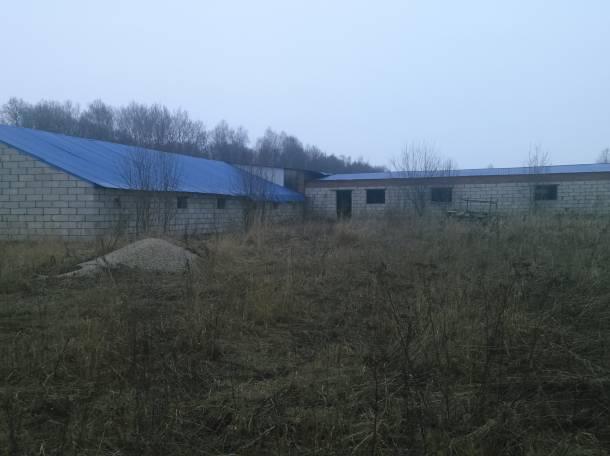 новая ферма, фотография 1