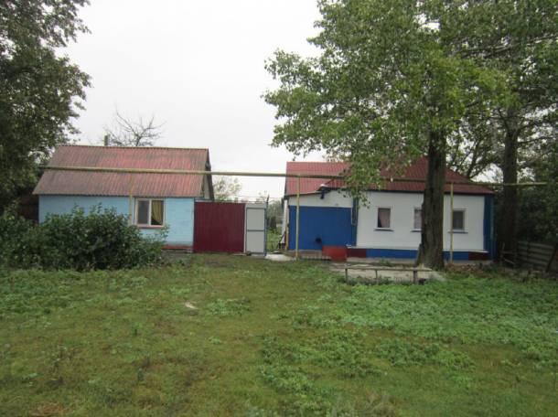 Продается дом в Волоконовском районе, с. Грушевка Волоконовский район, фотография 1