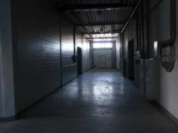Сдам в аренду склады и холодильные камеры, Нижний ул. Торфяная, д.33, фотография 5