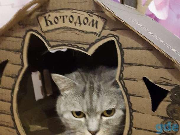 Продаю Кошкин Дом, фотография 1