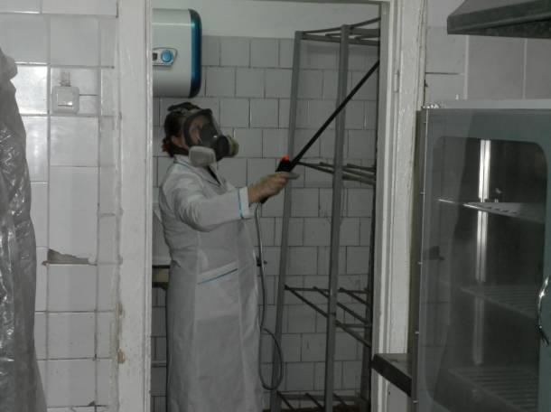 уничтожение клещей комаров и клопов СЭС в городе Владимир, фотография 4
