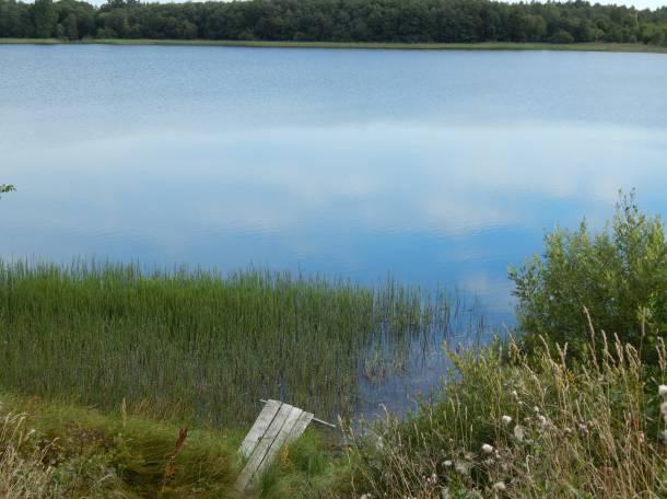 Земля у озера, район д.Пушкино, фотография 2