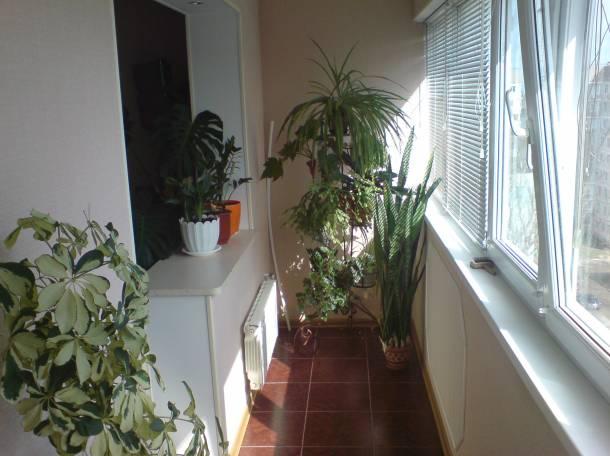 Сдам квартиру в г. щелкино, фотография 9