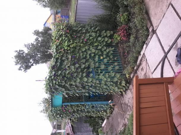 Продам дом., фотография 3