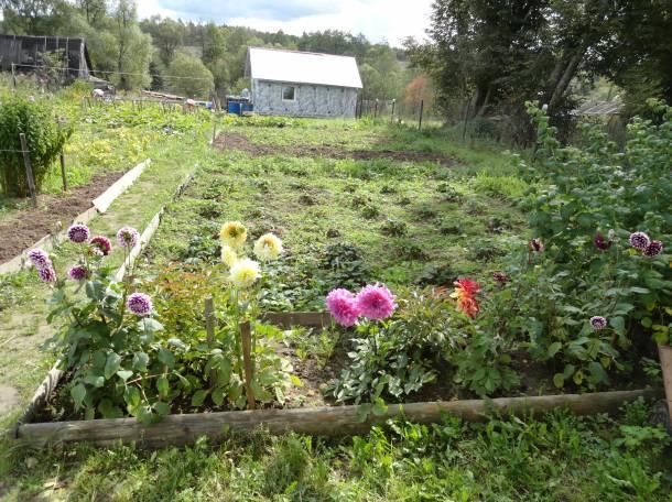 продается щитовой дом, калужская обл сухиничский р-н деревня Глухая, фотография 4
