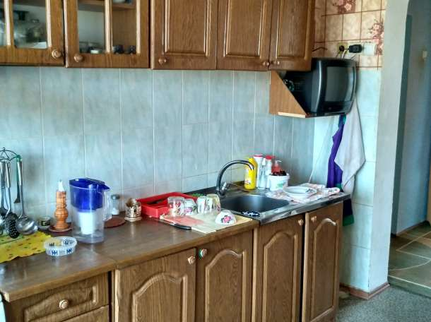 продам дом с минифермой  в с. долинка, фотография 2