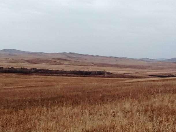 земля сельхозназначения, фотография 1