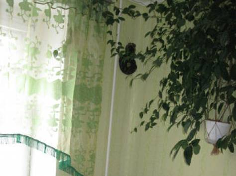 квартира в Калиново, фотография 2