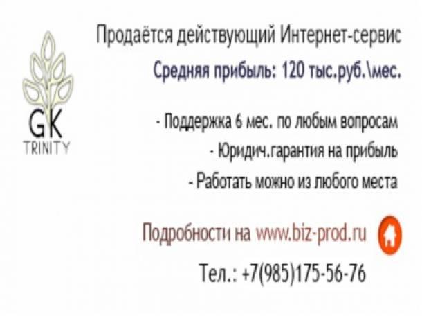 Продаётся действующий Интернет-сервис с прибылью 120 тыс.руб., фотография 1