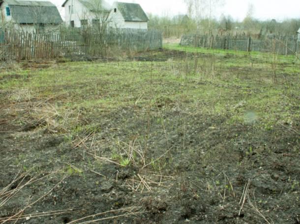 цена аренда сельхоз земли в брянской области